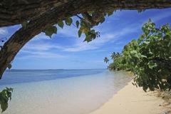 2008-Tonga-1