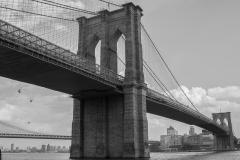 NYC-101