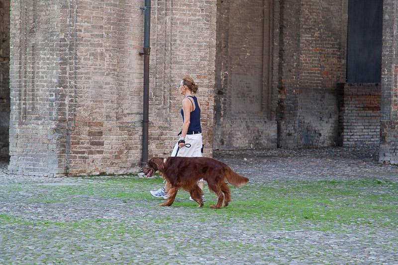 Parma_2014-21