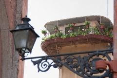 Parma_2014-29