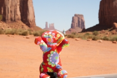 Monument_valley-255