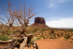 Monument_valley-259