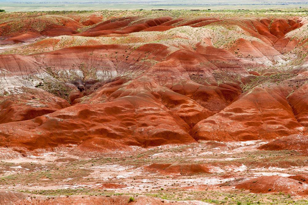 Painted_desert-44