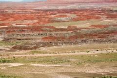 Painted_desert-51