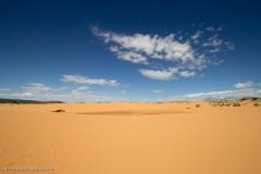 Coral_pink_sands_dunes-19
