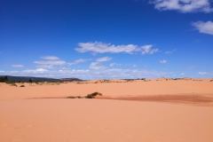 Coral_pink_sands_dunes-2