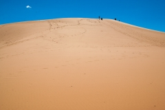 Coral_pink_sands_dunes-20