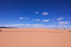 Coral_pink_sands_dunes-4