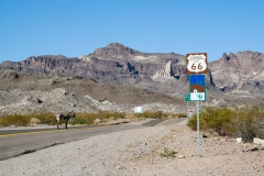 Route66-471