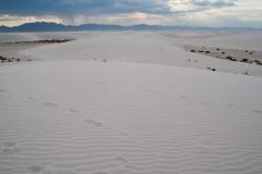 White_sands-16