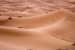 Marocco_2016-115