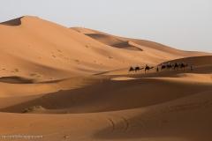Marocco_2016-201