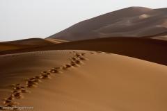 Marocco_2016-202