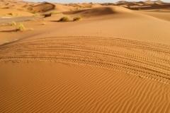Marocco_2016-75