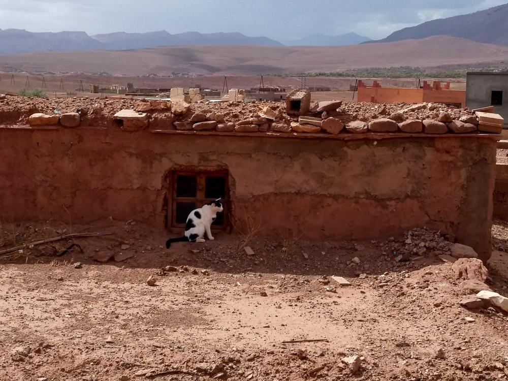 Marocco_2016-418