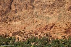 Marocco_2016-241