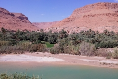 Marocco_2016-58