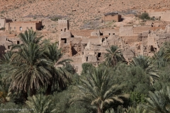 Marocco_2016-62