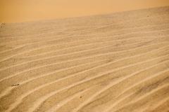 deserto-30