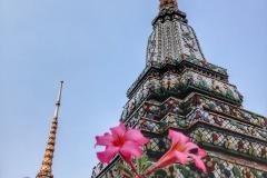 2017 - Thailandia-11