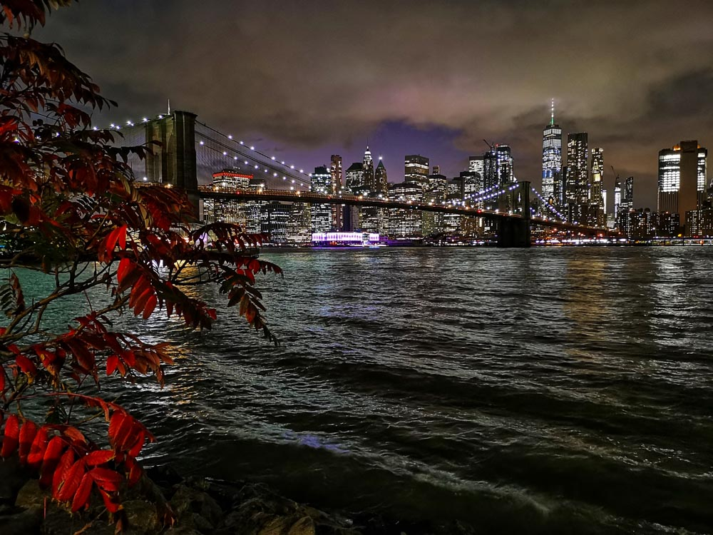 2019-New-York-26