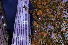 2019-New-York-5