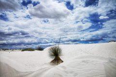 032-White-Sands