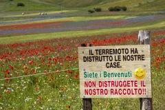 2020-Fioritura-di-Castelluccio-1