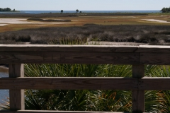 st.mark_e_everglades-27