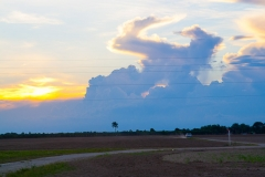 st.mark_e_everglades-48