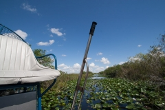 st.mark_e_everglades-65