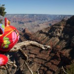 Charlie nel Grand Canyon